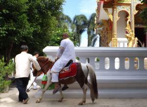 Riding Monk2