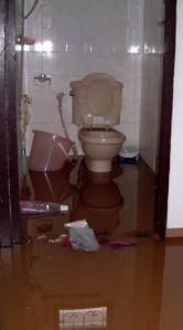 Mein WC am 3. Nov. 2002.