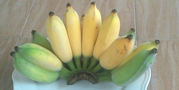 bananenhand