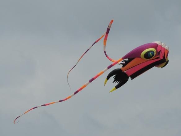 satun-kite-5